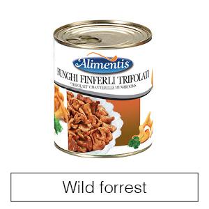 Wild Forrest
